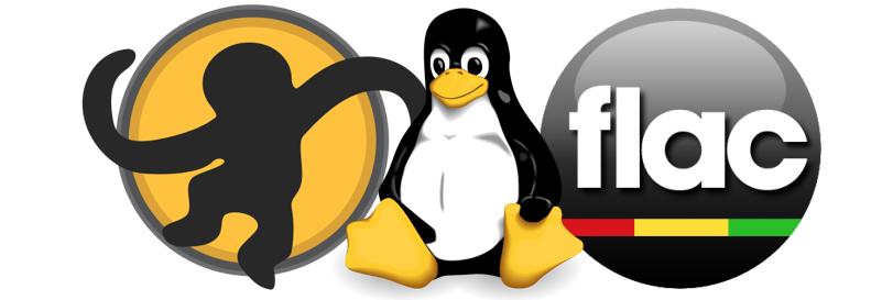 Procesar archivos .flac, .ape y .cue en consola de Linux